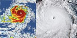 Hoảng hồn trước siêu bão mạnh nhất năm đang tiến về Đông Á