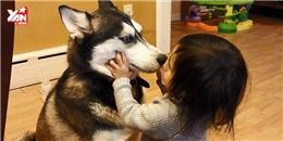 Những khoảnh khắc yêu không chịu được của các bé bên cún cưng
