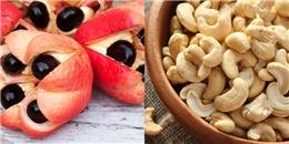 10 thực phẩm cực kì nguy hiểm cho sức khỏe con người
