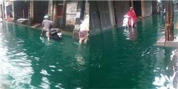 Ngạc nhiên cảnh nước lụt ở Hà Nội... xanh như nước hồ bơi