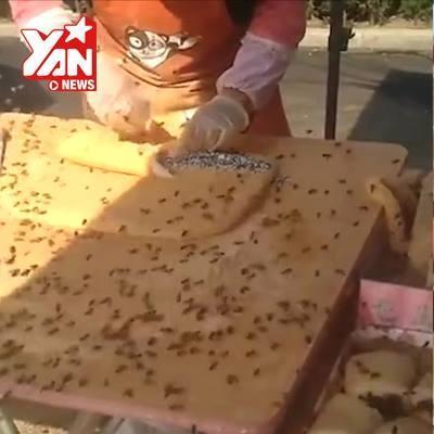 Kinh hoàng côn trùng bu đầy thức ăn Trung Quốc
