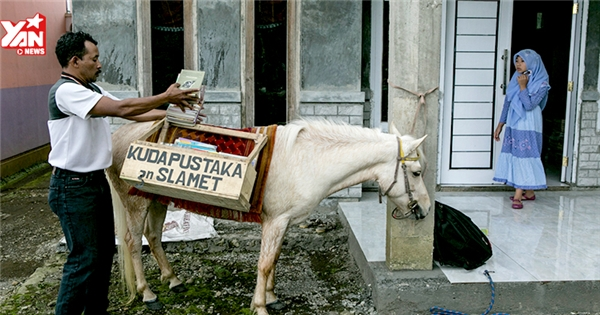 Độc đáo với thư viện trên lưng ngựa ở Indonesia