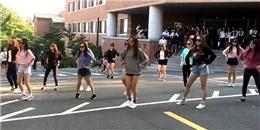 Màn flashmob theo 'hit' Kpop cực đáng yêu của nữ sinh Hàn