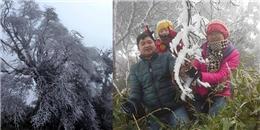 Dân mạng phấn khích tột độ khi tuyết rơi trắng trời Đồng Văn