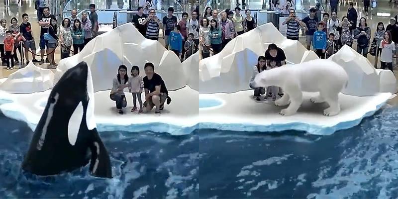 Bãi biển 3D sống động như thật khiến bạn không tin vào mắt mình