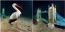 Độc lạ: tham quan bảo tàng điêu khắc… dưới đáy biển