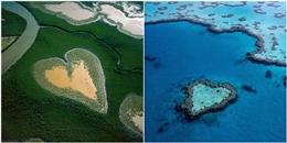 Săn lùng 10 'quả tim' khổng lồ sống động giữa thiên nhiên