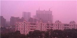 Hiện sương mù màu hồng tím 'gây sốt' cộng đồng mạng