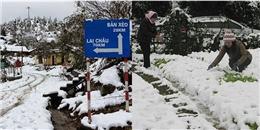Dự báo nhiệt độ xuống thấp, Sa Pa sẽ trở thành thiên đường tuyết trắng