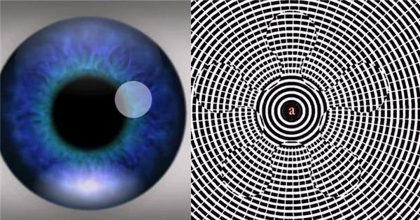 Tập trung 1 phút 30 giây bạn sẽ thấy điều 'vi diệu'