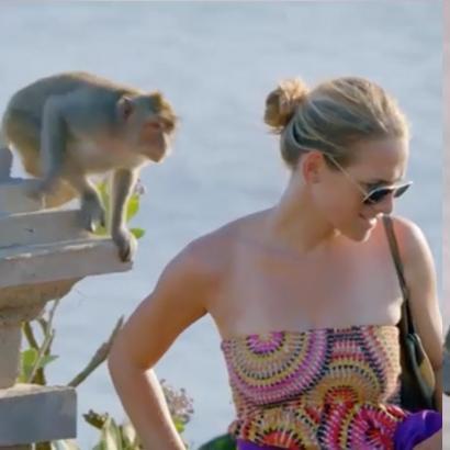 Ngỡ ngàng trước kĩ năng  đạo chích  chuyên nghiệp của những chú khỉ