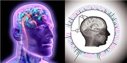 Phát minh mới: Máy tính đã có thể đọc được suy nghĩ của con người