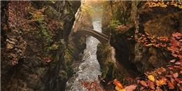 Những cây cầu 'vi diệu' khiến bạn thấy như lạc vào xứ thần tiên
