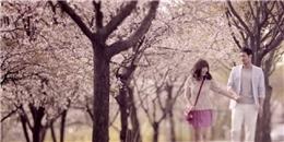 Lịch ngắm hoa anh đào Nhật Bản