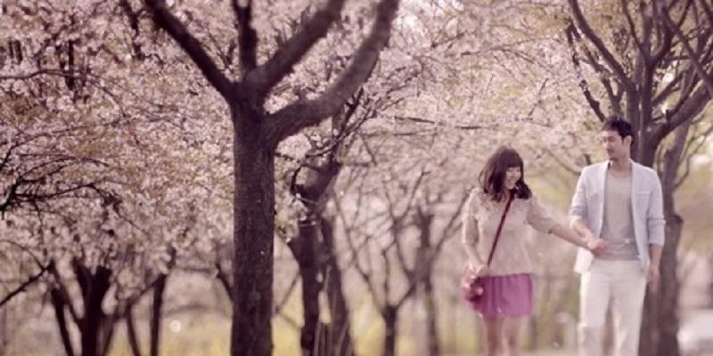 """Lịch ngắm hoa anh đào Nhật Bản """"chỉnh là mất chuẩn"""""""
