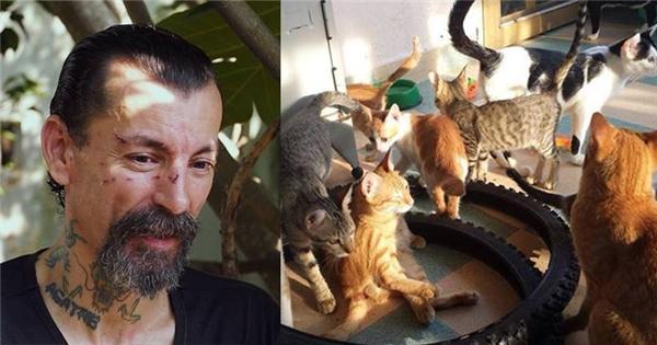 Câu chuyện về ông Tây nuôi trăm con chó mèo hoang tại Việt Nam