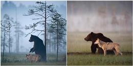 Tan chảy với tình bạn tuyệt đẹp giữa hai em 'đầu gấu rừng xanh'