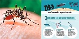 Infographic- Zika đang ở gần chúng ta hơn mức tưởng tượng!
