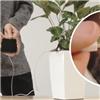 Xuất hiện chậu cây có khả năng sạc điện thoại