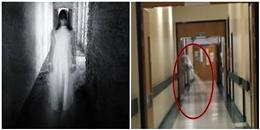 Đoạn clip quay được hồn ma trong bệnh viện khiến bạn 'dựng tóc gáy'