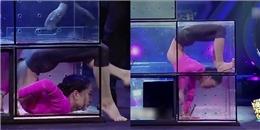 """Nín thở chứng kiến """"cô gái dẻo nhất Trung Quốc"""" uốn mình chui qua những chiếc hộp"""