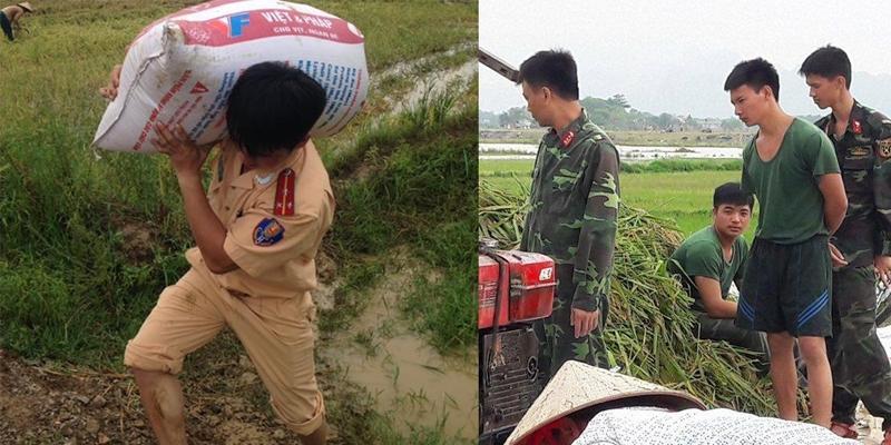 Cảm phục trước các chiến sĩ lội ruộng giúp nông dân gặt lúa