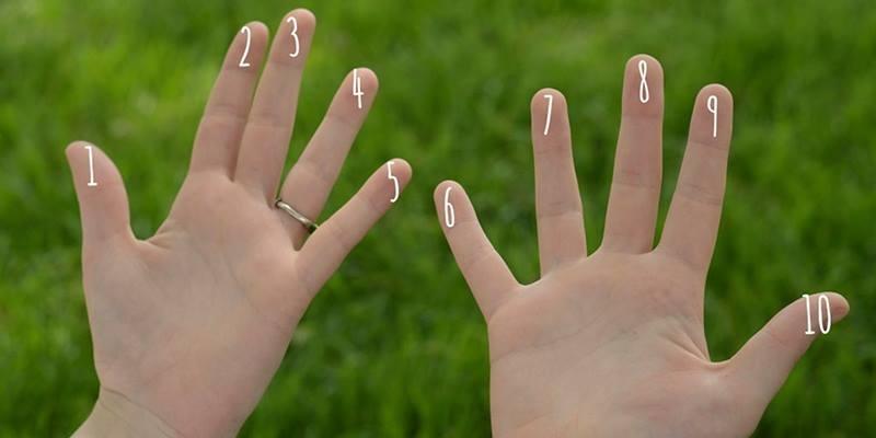 Số lượng hoa tay nói lên điều gì ở tính cách của bạn?