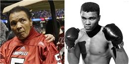 yan.vn - tin sao, ngôi sao - Huyền thoại quyền Anh Muhammad Ali qua đời ở tuổi 74