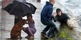 Những hình ảnh cho thấy thế giới này vẫn tràn ngập yêu thương