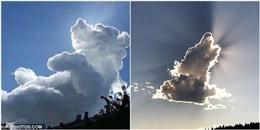Ngỡ ngàng tự hỏi đây là những đám mây hay bọn thú biến hình?