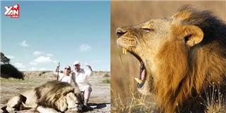 Chụp hình cùng sư tử và cái kết khiến dân mạng thế giới hoang mang