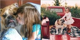 Ngưỡng mộ tình bạn thắm thiết của cô chủ nhỏ và chú chó Bull