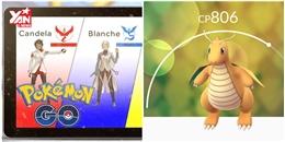Niantic khuyên bạn nên 'săn' các Pokemon giá trị này thay vì hàng loạt