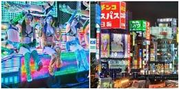 Sự thật đằng sau khu phố đèn đỏ khét tiếng của Nhật