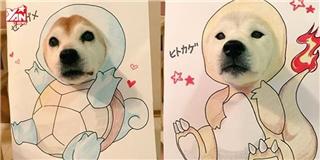 Phát cuồng với vẻ đáng yêu của đôi Shiba Inu hoá trang thành Pokemon