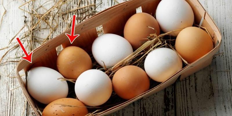 Có phải màu trứng càng đậm thì càng dinh dưỡng?