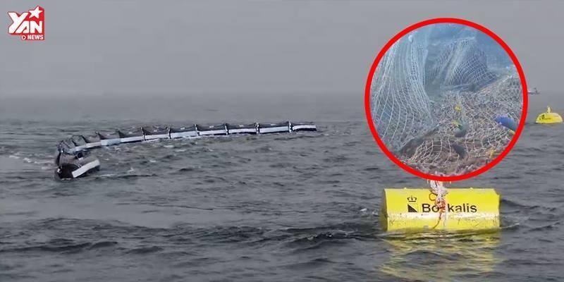 Bất ngờ với cách giữ biển sạch của thiên tài 21 tuổi