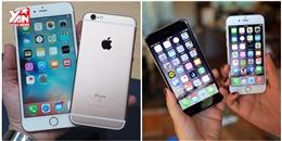 Hàng loạt iPhone đời cũ giảm giá mạnh sau khi iPhone 7/ 7 Plus ra mắt