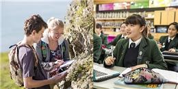 Khám phá hệ thống giáo dục trung học hàng đầu thế giới tại New Zealand