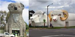 Khi động vật cũng 'đua đòi' làm mẫu cho các công trình kiến trúc