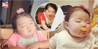 Cư dân mạng đang  chao đảo  vì em bé Nhật Bản  vừa ăn vừa ngủ