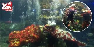 Độc đáo màn múa lân dưới nước ở Nha Trang