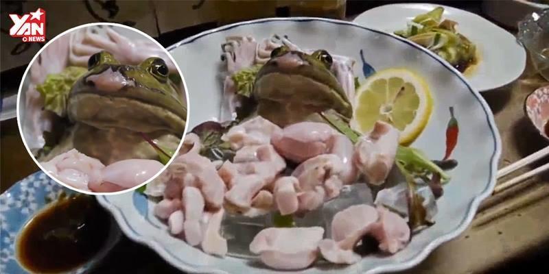 Rùng mình nhìn cận cảnh người Nhật Bản ăn ếch sống