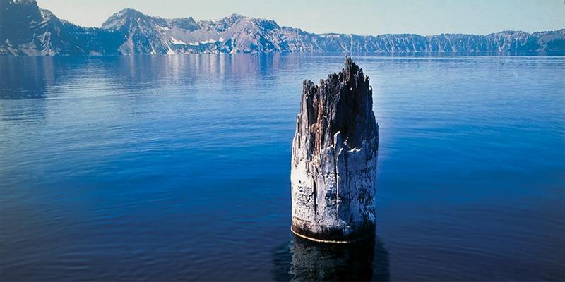"""Khúc cây nổi trên mặt hồ có khả năng """"gọi bão"""" một cách huyền bí?"""