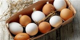 Trứng gà nâu và trứng gà trắng có gì khác biệt?