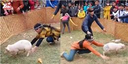 Cư dân mạng thích thú với trò bịt mắt bắt heo truyền thống