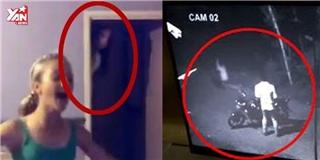 Những đoạn clip có thật kinh dị không kém  Paranormal