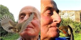 'Sửng sốt' trước cảnh người đàn ông cho chim ăn bằng miệng
