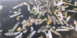 Ông Tây 'kỳ lạ' chụp ảnh hàng trăm bao cao su nổi lềnh bềnh mặt hồ HN