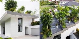 Công viên ngay trên mái nhà, đây chính là ngôi nhà 'độc' nhất Việt Nam